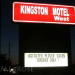 Motel Exhibition 2014 - Agitated Plover Salon